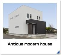 Antique modern house
