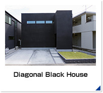 Diagonal Black House